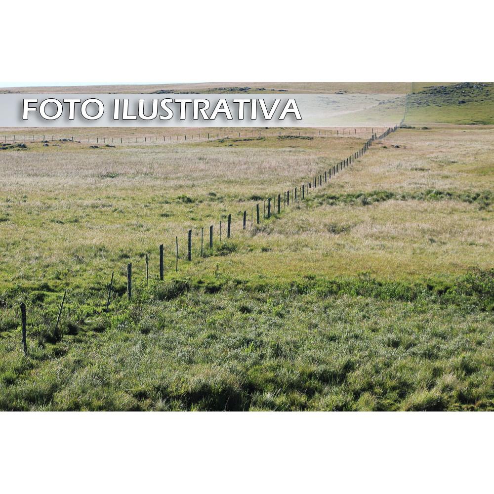 Gleba de terras com área de 67,76 ha