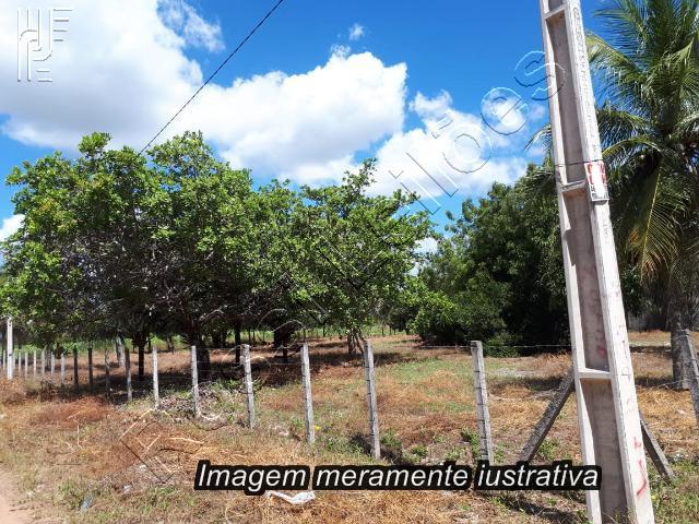 Gleba de Campos em Sta. Bárbara D'Oeste/ SP